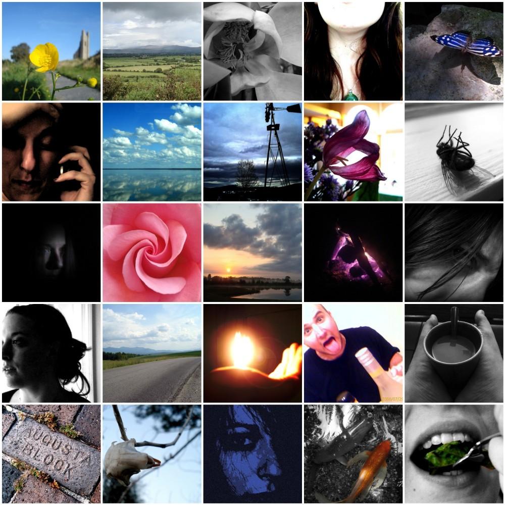 Photography (6/6)