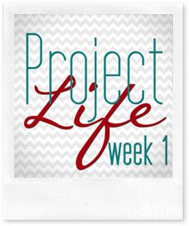 project life cover copy