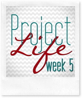 wk5 project life cover copy